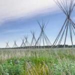 teepee frames in a field