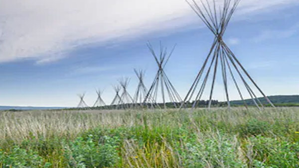 teepee frames in a field
